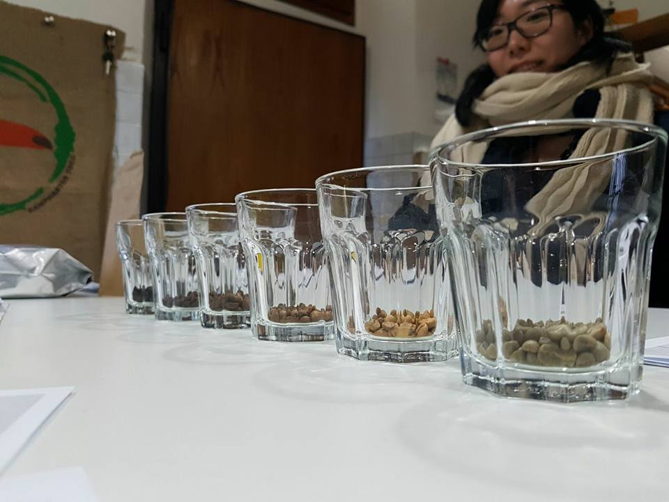 coffee-tasting-and-cupping-course (4)