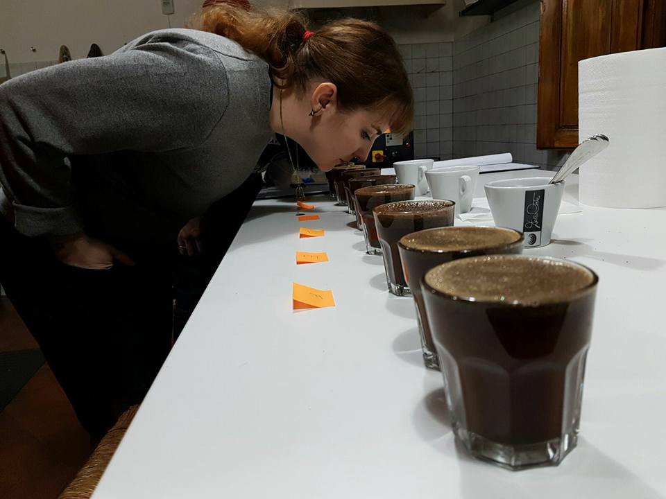 coffee-tasting-and-cupping-course (5)